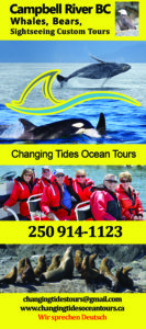 Ocean Tours rack card front