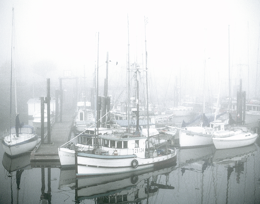 Foggy Morning in Campbell River Harbour