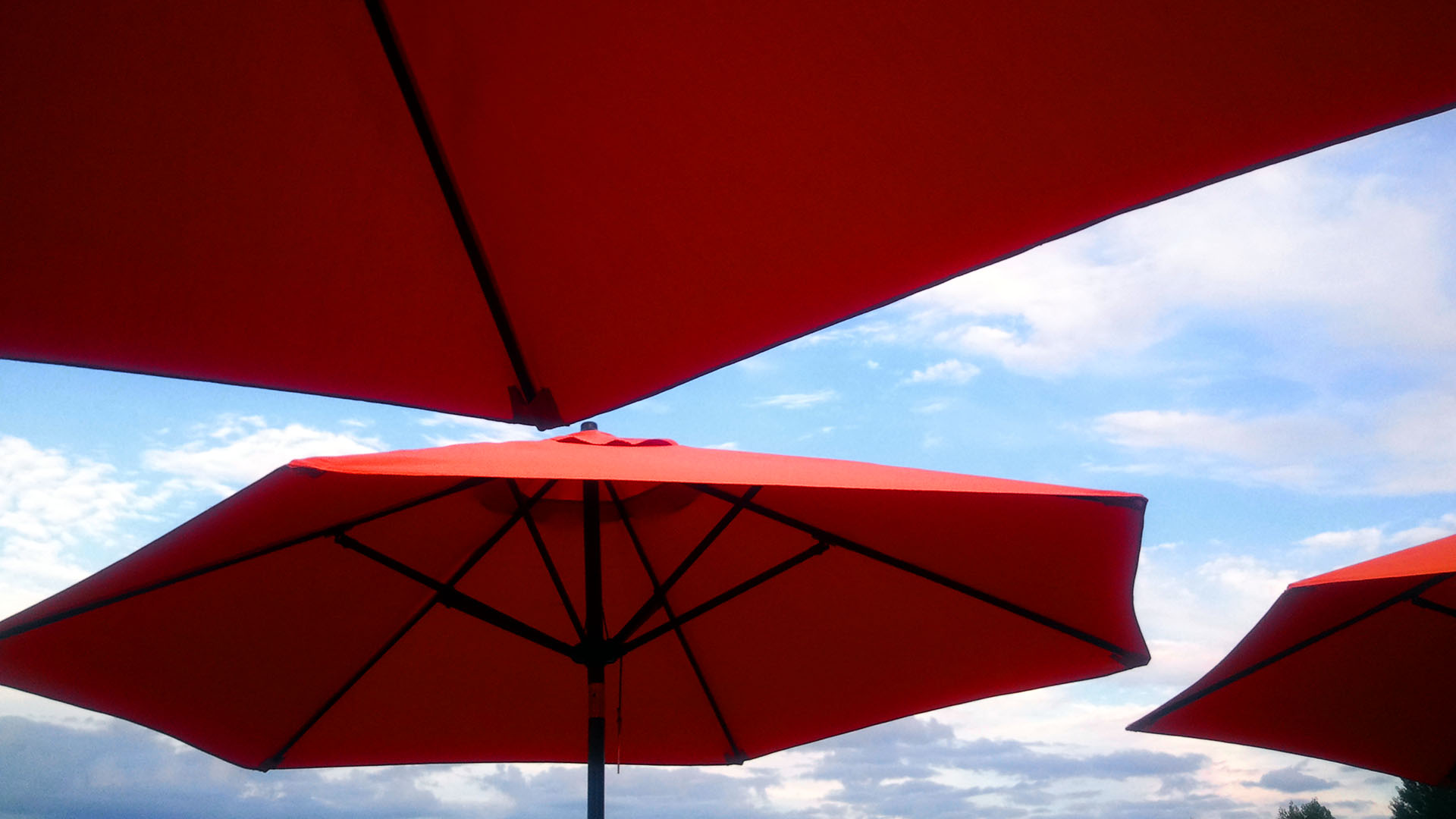 Orange Umbrellas, Campbell River BC